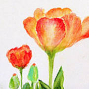 Tulips Orange And Red Art Print by Ashleigh Dyan Bayer