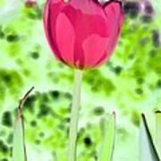 Tulips - Perfect Love - Photopower 2070 Art Print