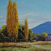 Tumut Farm Art Print