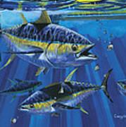 Tuna Blitz Off0039 Art Print
