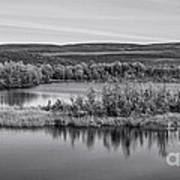 Tundra Pond Reflections Art Print