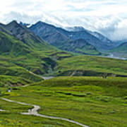 Tundra View From Eielson Visitor's Center In Denali Np-ak  Art Print