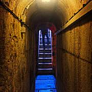 Tunnel Exit Art Print by Carlos Caetano