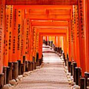 Tunnel Of Torii Gates, Fushimi Inari Art Print