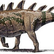 Tuojiangosaurus Multispinus Dinosaur Art Print