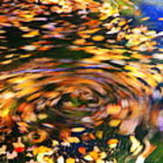 Turning Leaves Art Print