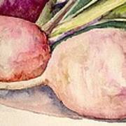 Turnips Art Print