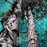 Turquois Trees  Art Print
