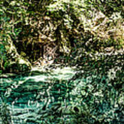 Turquoise Forest Pond On A Summer Day No1 Art Print