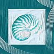 Turquoise Seashells Xxi Art Print