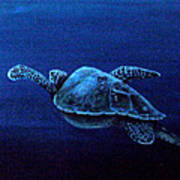Turtle In The Red Sea Art Print