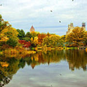Turtle Pond 2 - Central Park - Nyc Art Print