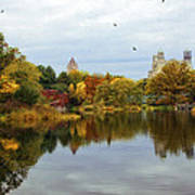 Turtle Pond - Central Park - Nyc Art Print