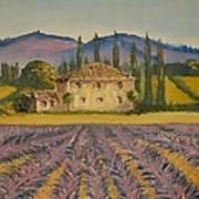 Tuscan Lavender Art Print
