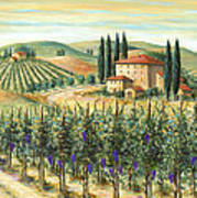 Tuscan Vineyard And Villa Art Print