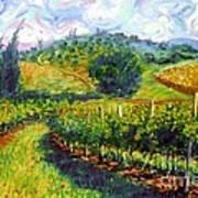 Tuscan Wind Art Print by Michael Swanson