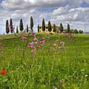 Tuscany - Pienza Art Print