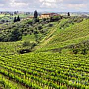 Tuscany-italy Art Print