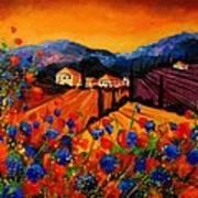 Tuscany Poppies Print by Pol Ledent