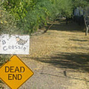 Tv Movie Homage Killer Bees 1974 B's Crossing Black Canyon City Arizona 2004 Art Print