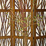 Twigs On Twigs Art Print