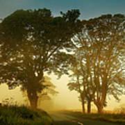 Twilight Guardians. Misty Roads Of Scotland Print by Jenny Rainbow