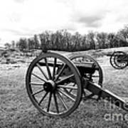 Two Cannons Art Print