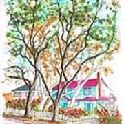 Two Dark Trees In West Hollywood -california Art Print
