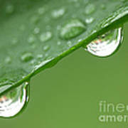 Two Droplets Art Print