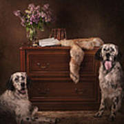 Two English Setters... Art Print