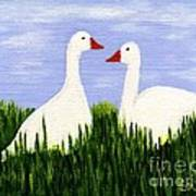 Two Geese Art Print