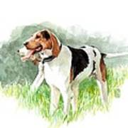 Two Hounds Art Print