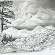 Two Junipers - Starr Mountain Art Print