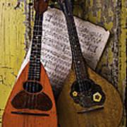 Two Old Mandolins Art Print