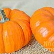 Two Orange Pumpkins Art Print