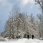 Two People Doing A Walk In Beautiful Forest In Winter Art Print by Matthias Hauser