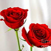 Two Roses Art Print