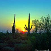 Two Saguaro Art Print