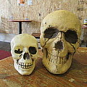 Two Skulls - At The Cafe Art Print