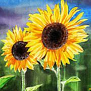 Two Sunflowers Art Print
