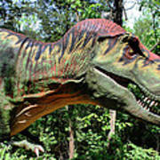 Tyrannosaurus Rex  T. Rex Art Print