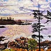 Ucluelet In December Art Print