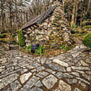 Ugly Cottage Art Print by Adrian Evans