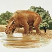 Uintatherium Art Print