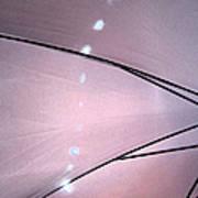 Umbrella Abstract 11 Art Print