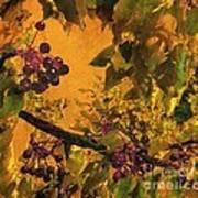 Under The Chokecherry Tree Art Print