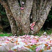 Under The Magnolia Tree Art Print