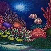 Undersea Creatures Vi Art Print