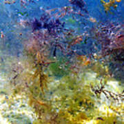 Underwater Abstract. Art Print