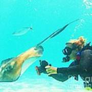 Underwater Photography Art Print